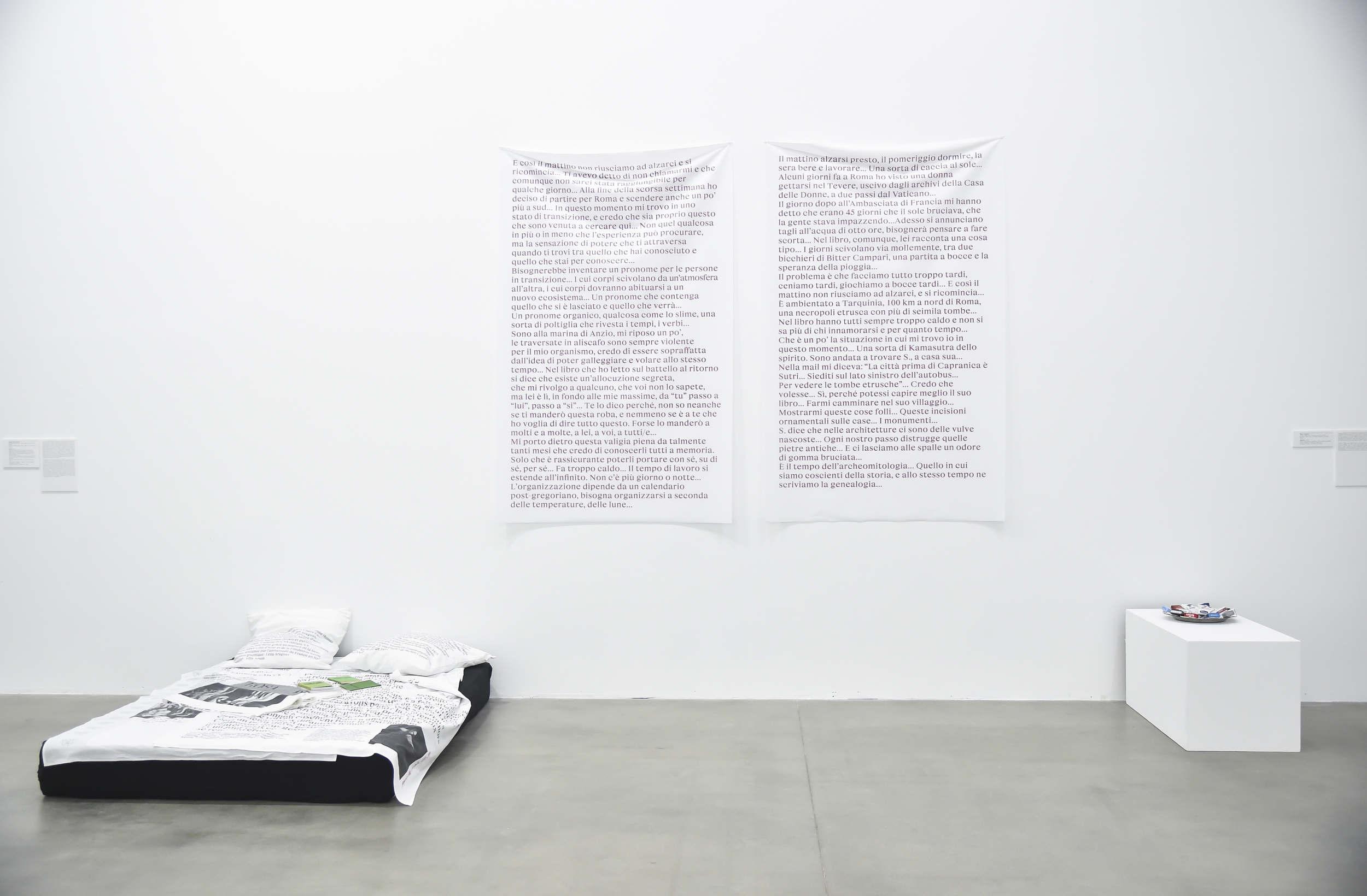 Brazil – Fondazione Sandretto Re Rebaudenga, Turin